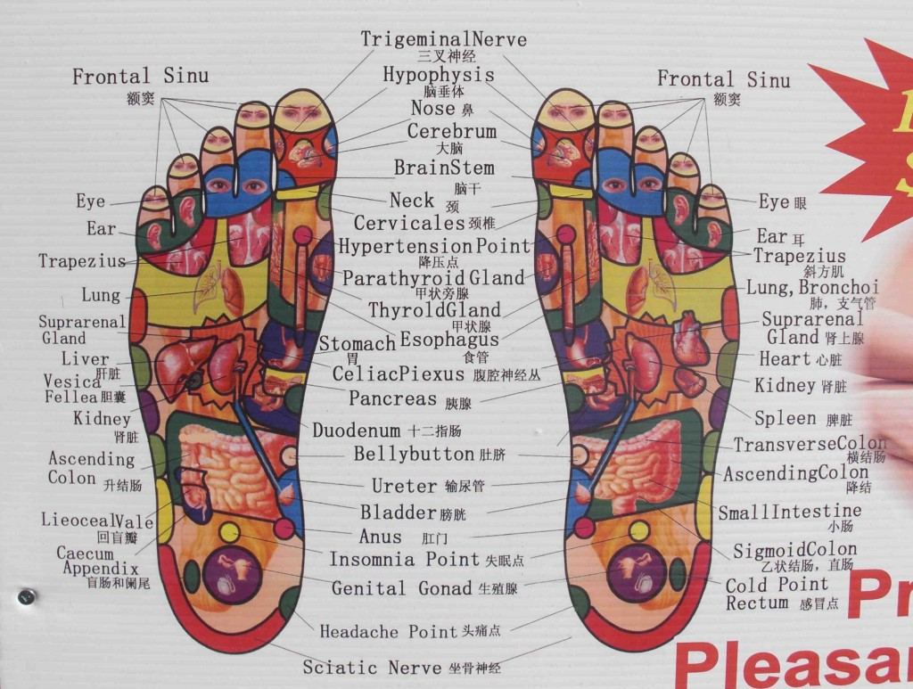 Foot Organs Map Adam Quang
