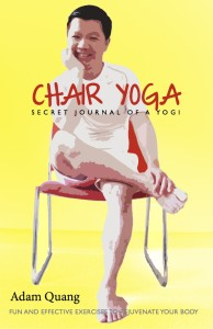 Secret Journal Of A Yogi - Chair Yoga cover