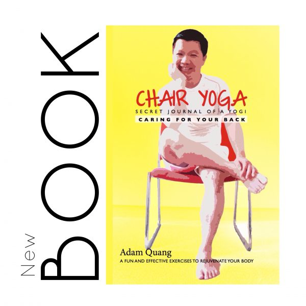 Adam Quang Secret Journal of a yogi chair yoga book -IMG_1546